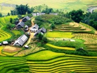 Sapa 3 Days/2 nigh t2 by Bus (2 nights hotel Sapa)